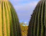 Desert Scene with Cross
