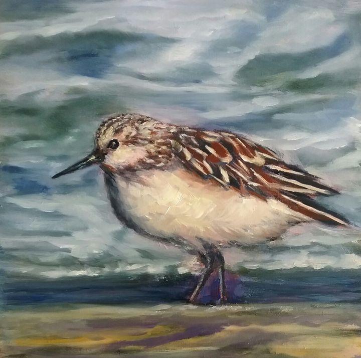 Sanderling - Beth Clark Arts