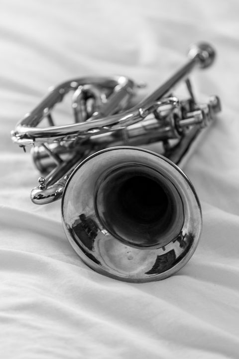 Trumpet on a bed - KOBAYASHI photography