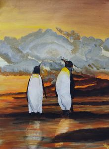 Penguins at sunset - S Aguirre