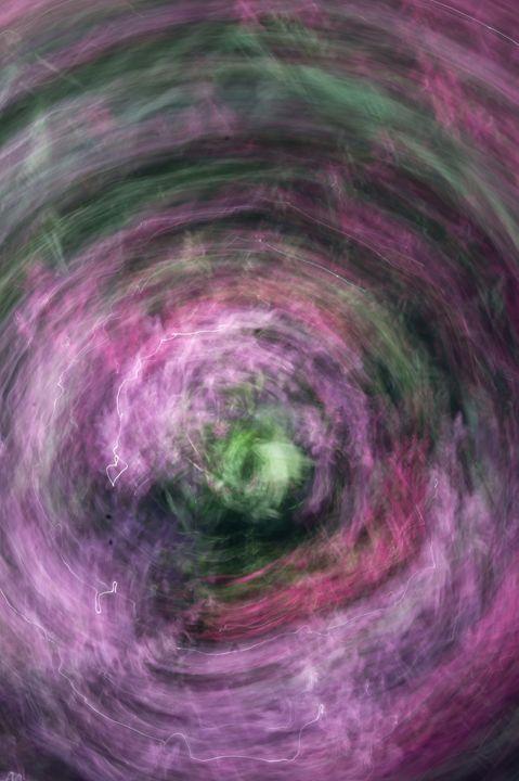 Abstract Flowery Swirl - David J Riffey