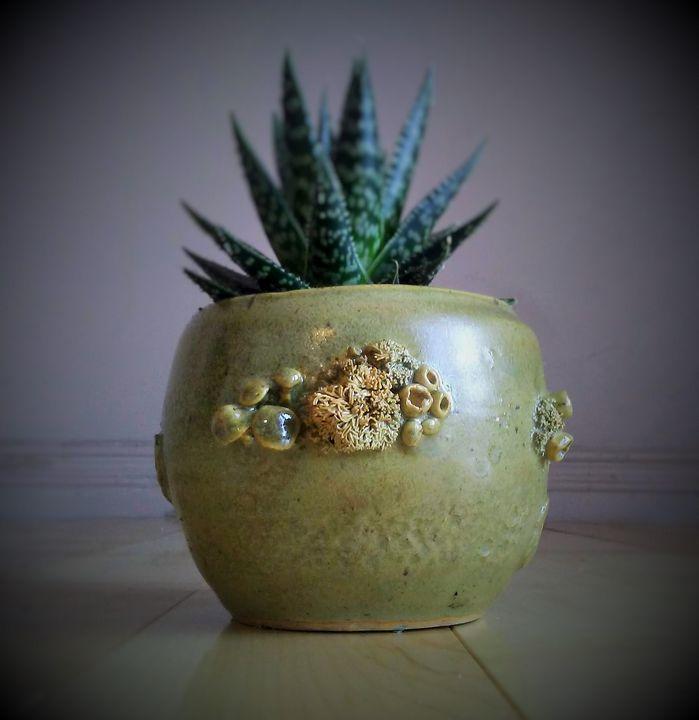 """Unseen"" ~ Lichen bowl - Charlotte's Web creations"