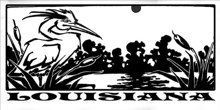 Louisiana - 5 Eyes Wide