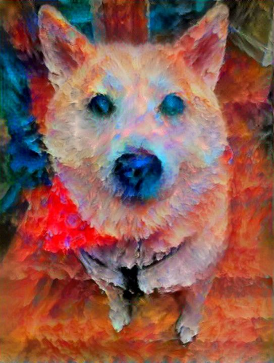 New puppy - Alex Ovechkina