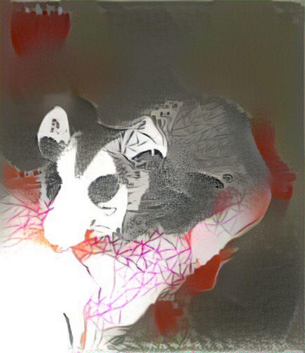 Opossum - Alex Ovechkina