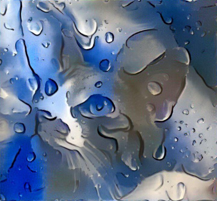Blue cat 2 - Alex Ovechkina