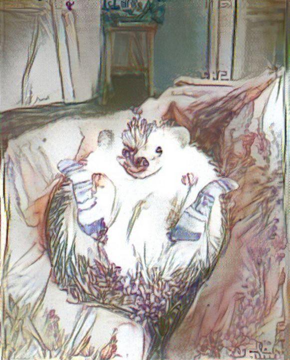 Hedgehog in socks - Alex Ovechkina