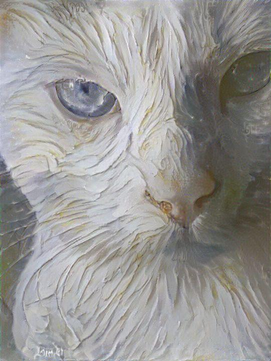 Marshmallow cat - Alex Ovechkina