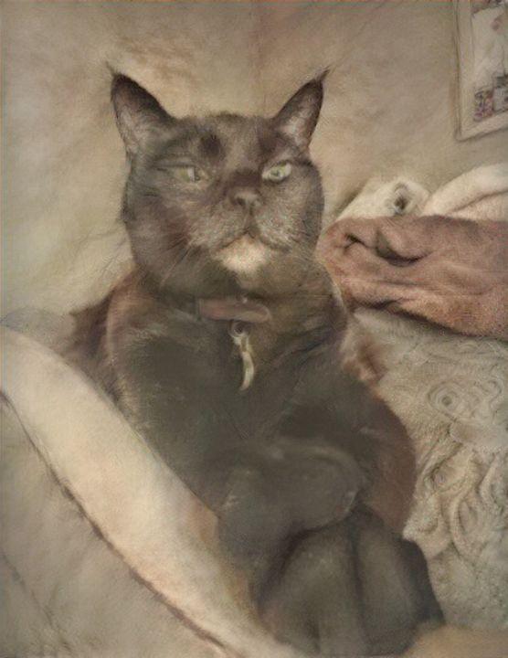 Papa cat - Alex Ovechkina