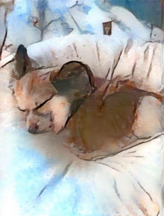 Foxy burrow - Alex Ovechkina