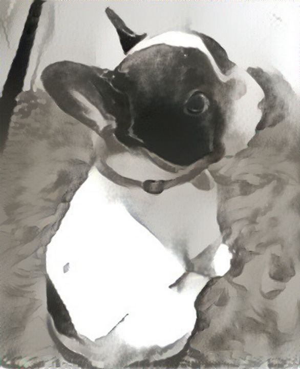 Pensive dog - Alex Ovechkina