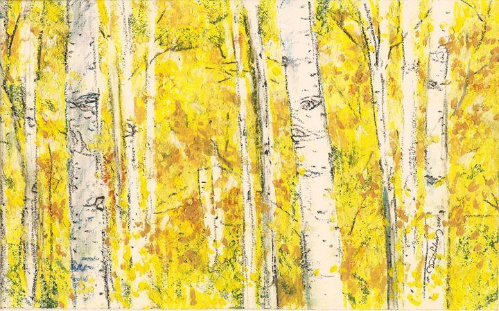 Birch - Nature