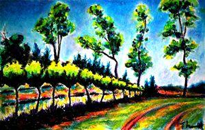 English Estates Vineyard