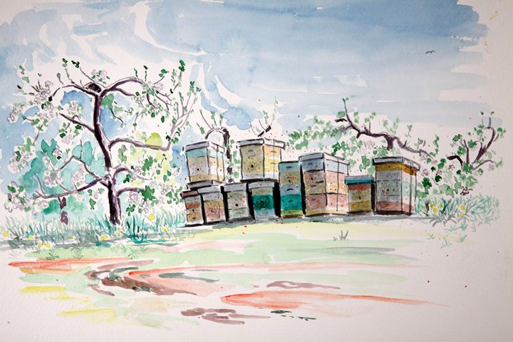 Bee Hives 2 - Greg Thweatt