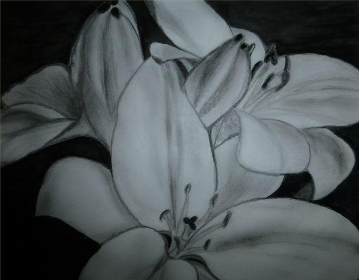 Flower lilies - Jeni
