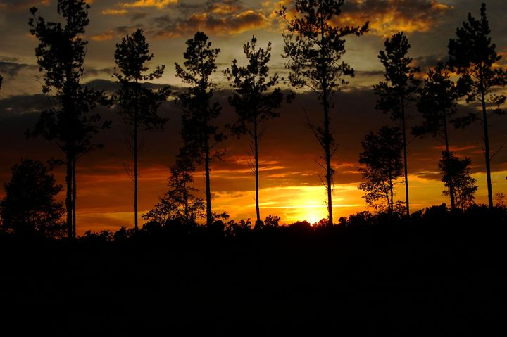 Country Sunset - Rebecca Murray Photography