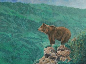 The Franklin Grizzly Bear