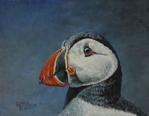 Atlantic Puffin.............Painting