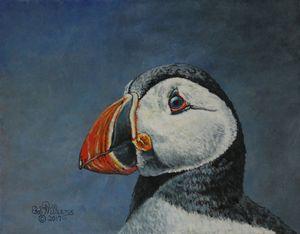 Atlantic Puffin.............Painting