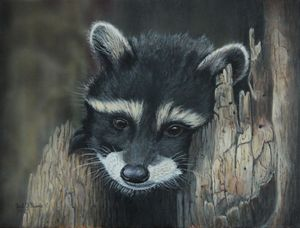 Kit...The baby raccoon painting