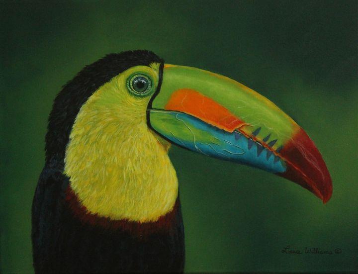 The Keel-Billed Toucan - Bob Williams Fine Art