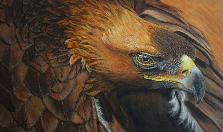 The Magnificent Golden Eagle - Bob Williams Fine Art