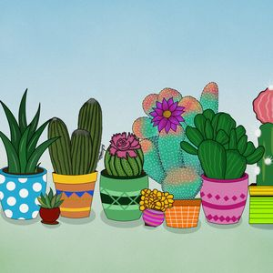 Girl Who Loves Cacti