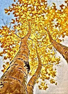 Treescape 4b