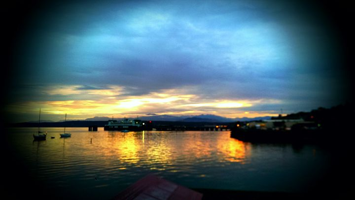The Harbor - D.C. Burzo
