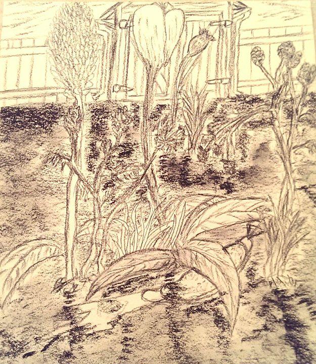 Garden Afternoon - D.C. Burzo