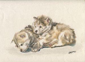 Husky & Huskie