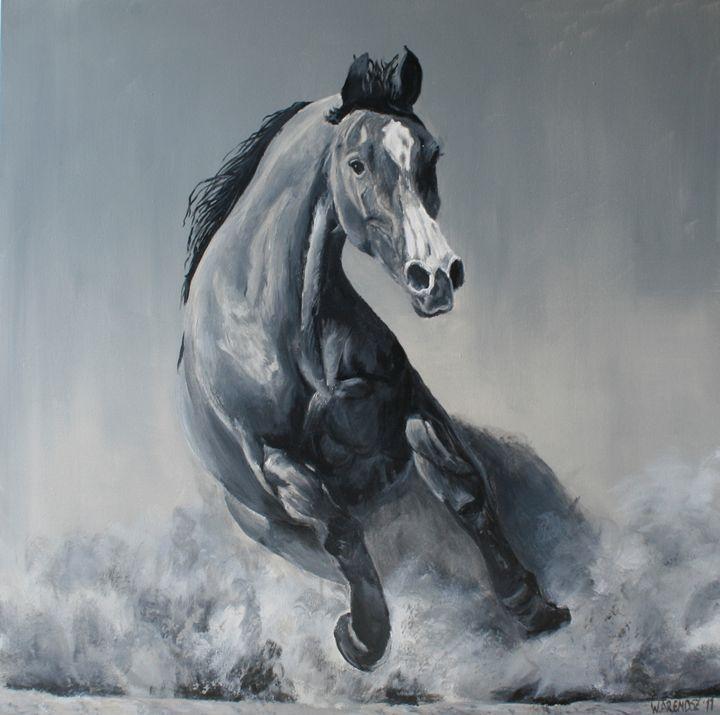 Wild horse - W. Arendsz