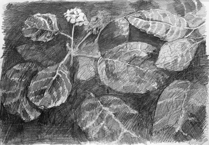 Shades of Leaves - Sun Rising Art Studio