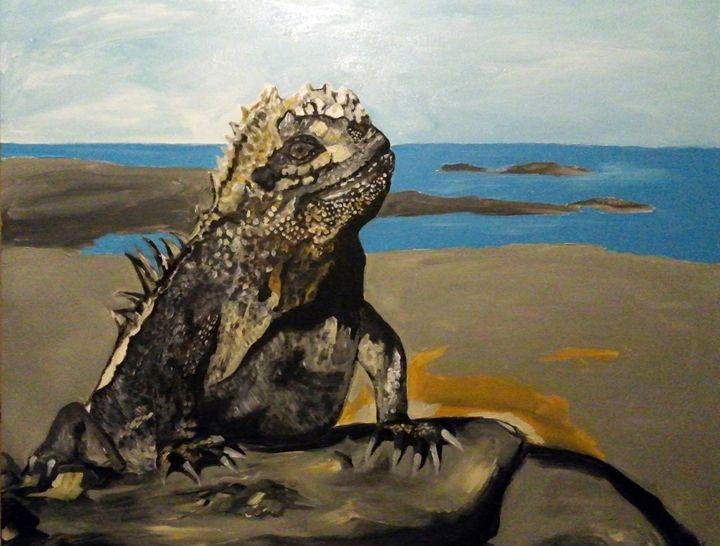 Marine Iguana - Adam Berardi