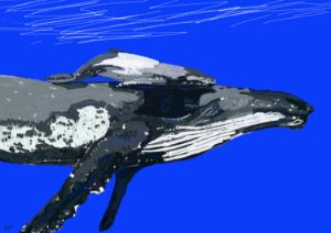 Whale Watching - Lucky Friday Artist
