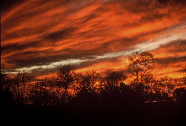 Fiery Sky - Rodney Williams