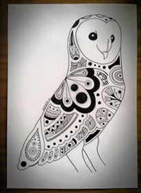 Barn Owl - Melanie Charlton