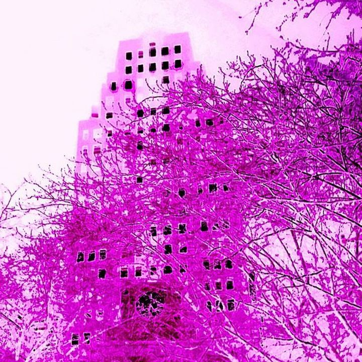 City Of Purple - LubetskyArt