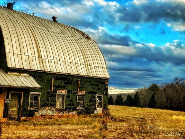 Farm Winston Salem NC - Tammera Carter Art Gallery