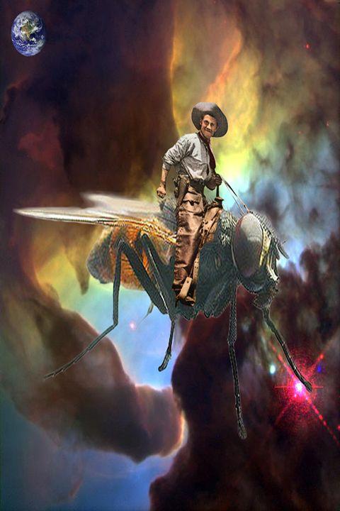 Space Cowboy - ICARUSISMART