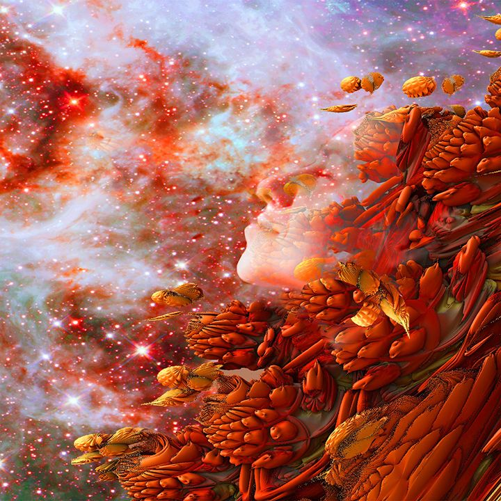 Star Dream - ICARUSISMART