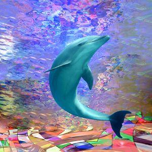 Dolphin Sunlight