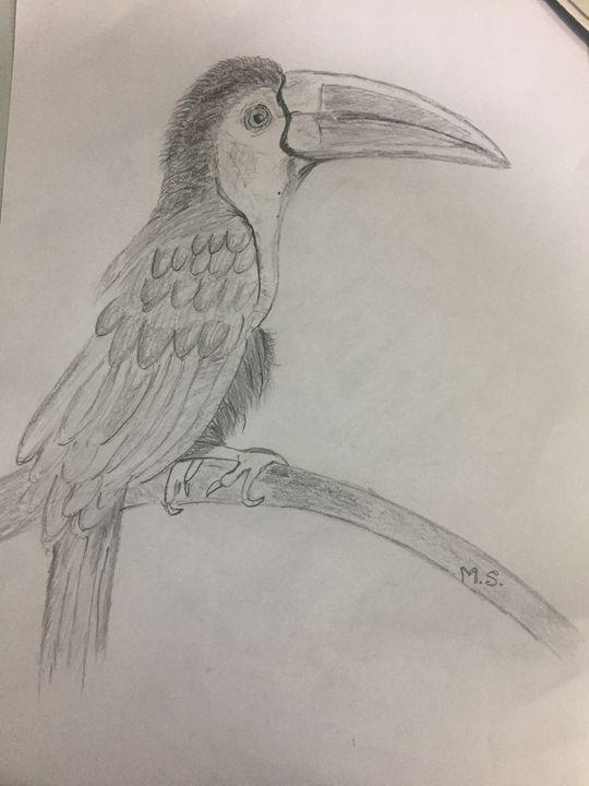 Bird - Magic in Hands