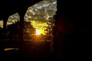 Morning sunshine Oswego Il