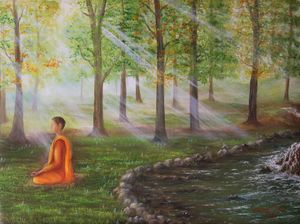 Meditation in Misty Forest