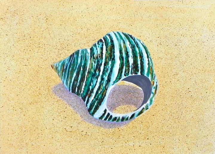 Still life with Seashells #1 - Amruta
