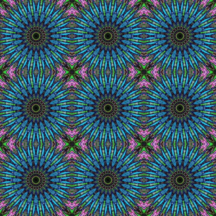 Paisley kaleidoscope, digital art 44 - Sofia Goldberg's Gallery