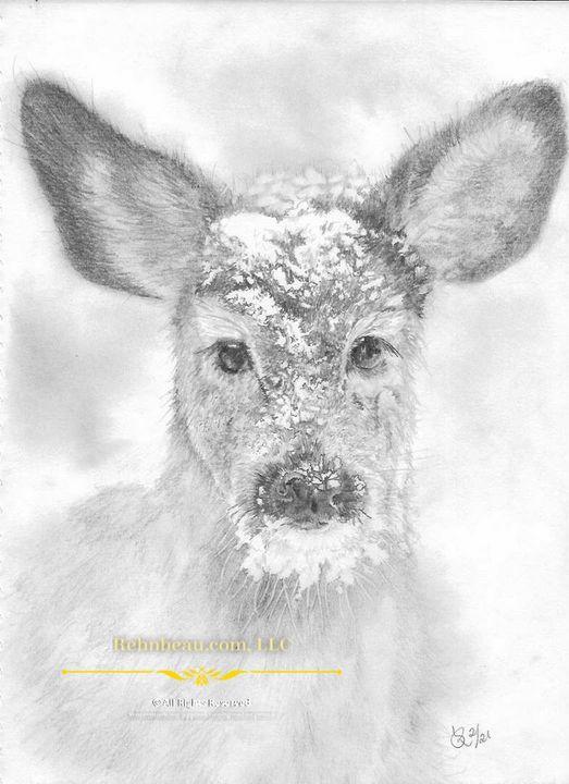 Snow Fawn - Rehnbeau