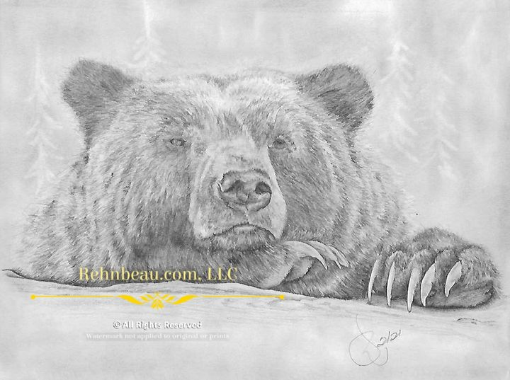First Grizzly - Rehnbeau