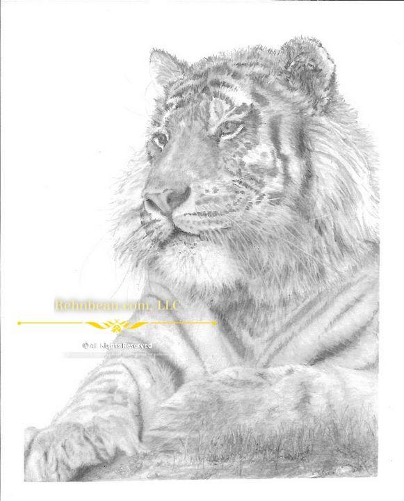First Tiger - Rehnbeau